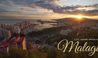 Traveler's Guide to Malaga