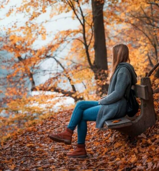 Most Beautiful Movies With an Autumn Mood