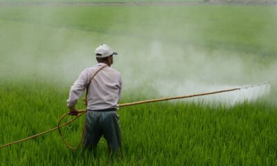 Common and Absurd Pesticide Myths